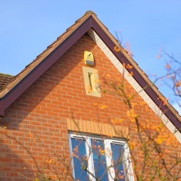 fascias brown