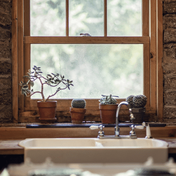 How to Look after Timber Windows